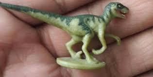 Raptor images (3)