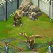 Compsognathus-longipes-JP-B