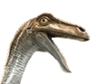 Jurassic World-Gallimimus-head-close-up