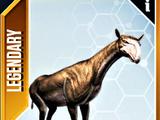 Urtinotherium