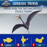 Zhejiangopterus Trivia