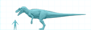 Allosaurussize