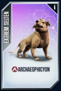 Archaeophicyon Card