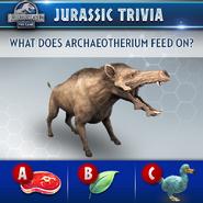 Archaeotherium Trivia