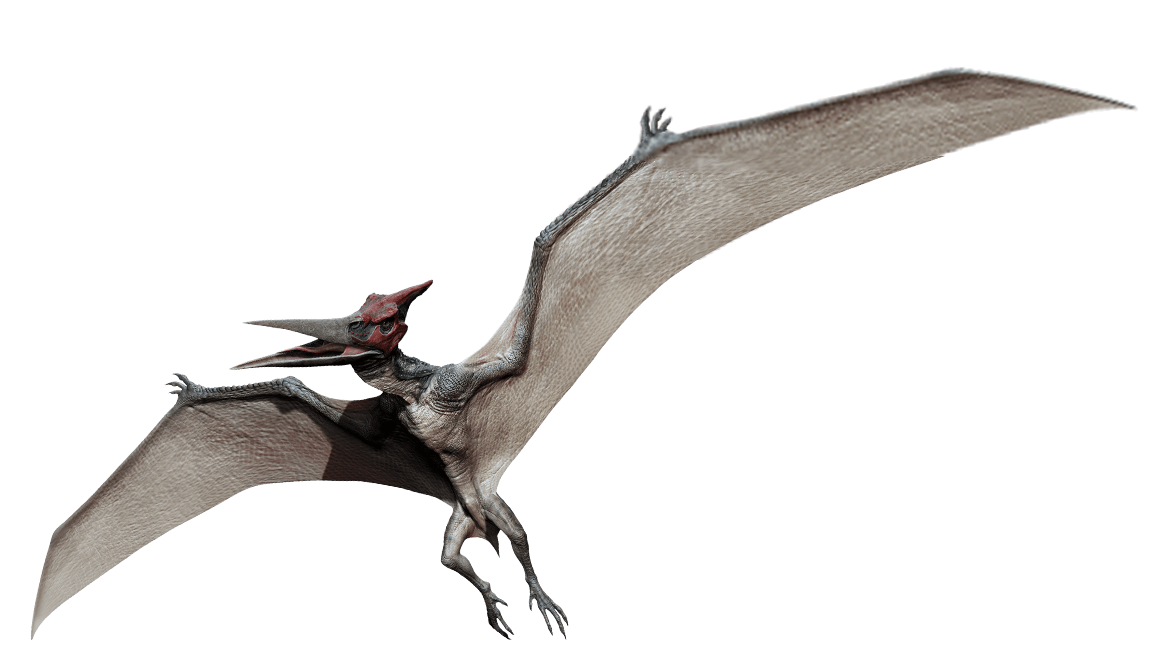 Pteranodon Jurassic Park Wiki Fandom