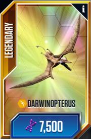 Darwinopterus 1