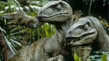 Velociraptor-0