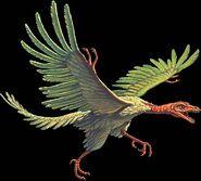 Archaeopteryx joe tucciarone