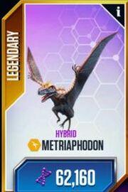 Metriaphodon-1
