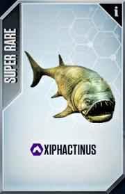 Xiphactinus Card
