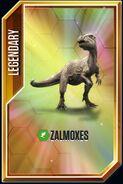 Zalmoxes card