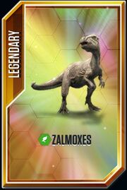 Zalmoxes card