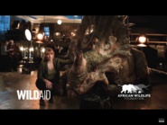 African Wildlife Foundation Ad with Perry the Sinoceratops