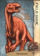 2001 Jurassic Park III 3-D 67 Maiasaura front