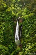 Jurassic-Park-Falls-Kauai(pp w599 h900)