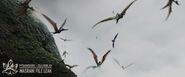 Pterosaurs