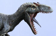 Jama-jurabaev-af-allousaurus-v0014-close-up-approved-jj