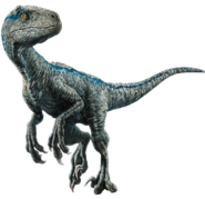 Fallen kingdom blue the velociraptor v4 by sonichedgehog2-dcalxw4