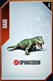 Ophiacodon Card