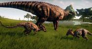 Dracorexes