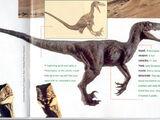 Jurassic Park Raptor Effects