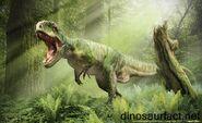 Giganotosaurus Render