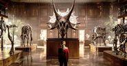 Kosmoceratops Skeleton JP