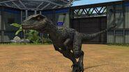 Jurassic world the game blue by sonichedgehog2-dalo64d