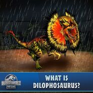 Dilophosaurus Venenifer (259)