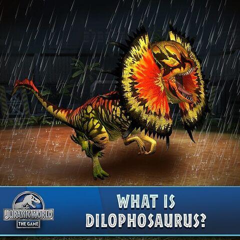 File:Dilophosaurus Venenifer (259).jpg