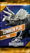 Common Plus Pack (Basic)