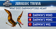 Darwinopterus Trivia