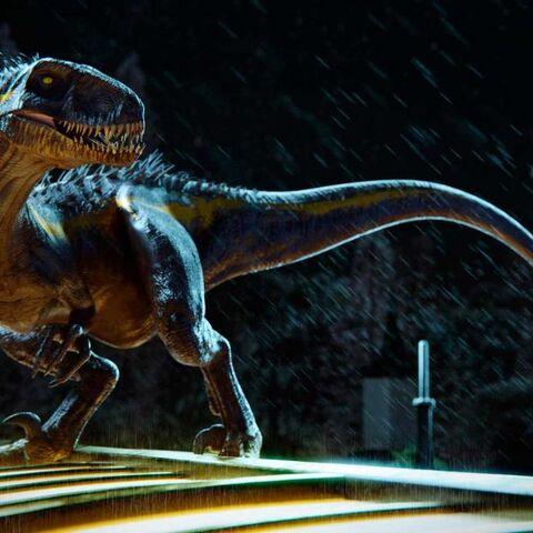 Der Indoraptor in lauernder Kampfstellung