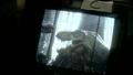 Jurassic Park III - T. rex animatronic BTS - 00010
