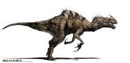 Malasaurus Fin 2-27-13-1024x504