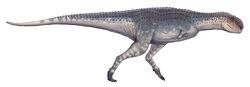 Quilmesaurus curriei