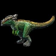 Dracorex (1)