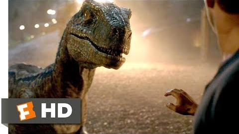Jurassic World Fallen Kingdom (2018) - Goodbye, Blue Scene (9 10) Movieclips