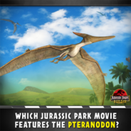 Which Jurassic Park movie features Pteranodon