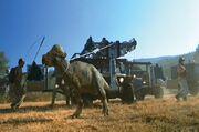 Pachycephalosaurus 1997 01