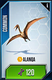 Alanqa Card