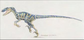 Raptormark1