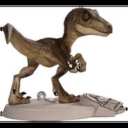 Raptor 174241