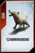 Andrewsarchus card