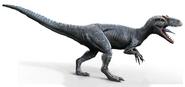 Allosaurus-0