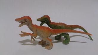 Raptor tombola