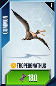 Tropeognathus new card