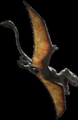 Dimorphodon dczs5y5-000bb445-8667-4bec-9e0a-ef2b4f3d7b81