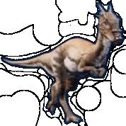 Dracorex-jwe