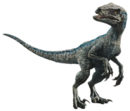 Fallen kingdom blue the velociraptor v5 by sonichedgehog2-dcb00lh